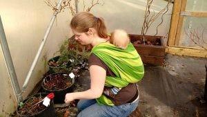 sling-sally-gardening